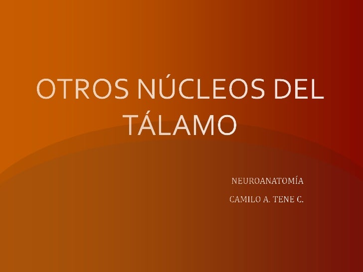Otros núcleos del tálamo