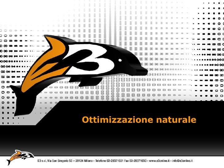 Ottimizzazione naturale