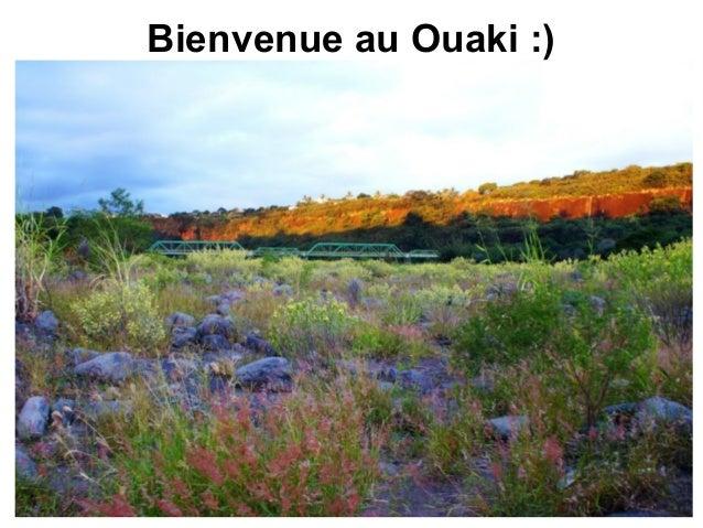 Bienvenue au Ouaki :)