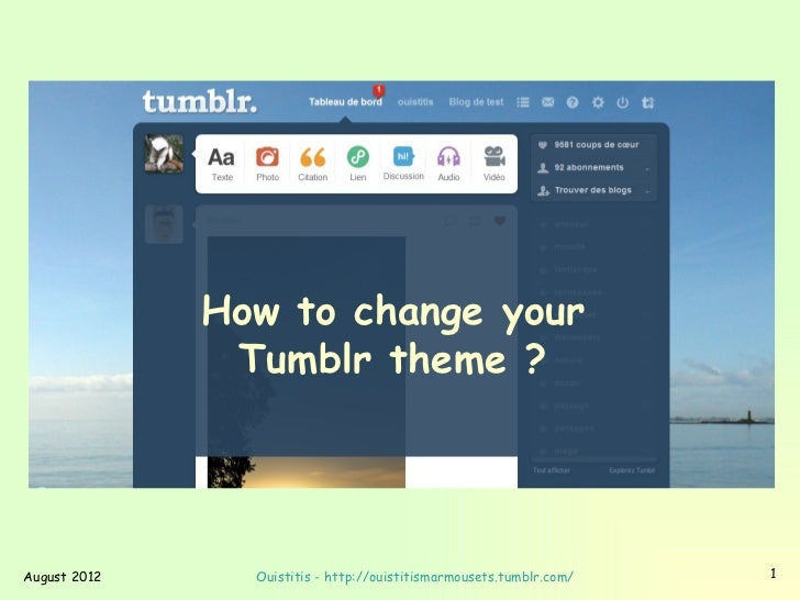 How to change your               Tumblr theme ?August 2012     Ouistitis - http://ouistitismarmousets.tumblr.com/   1