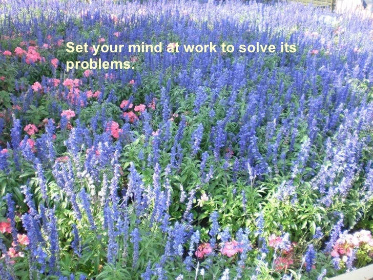 Set your mind at work to solve its problems.