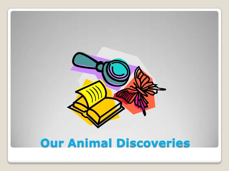 Our Animal Discoveries