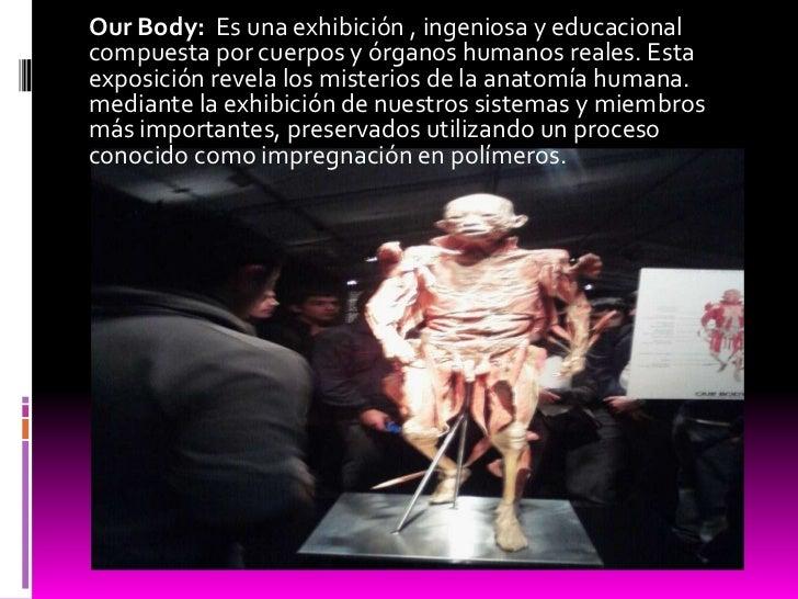 Our Body:  Es una exhibición , ingeniosa y educacional compuesta por cuerpos y órganos humanos reales. Esta exposición rev...