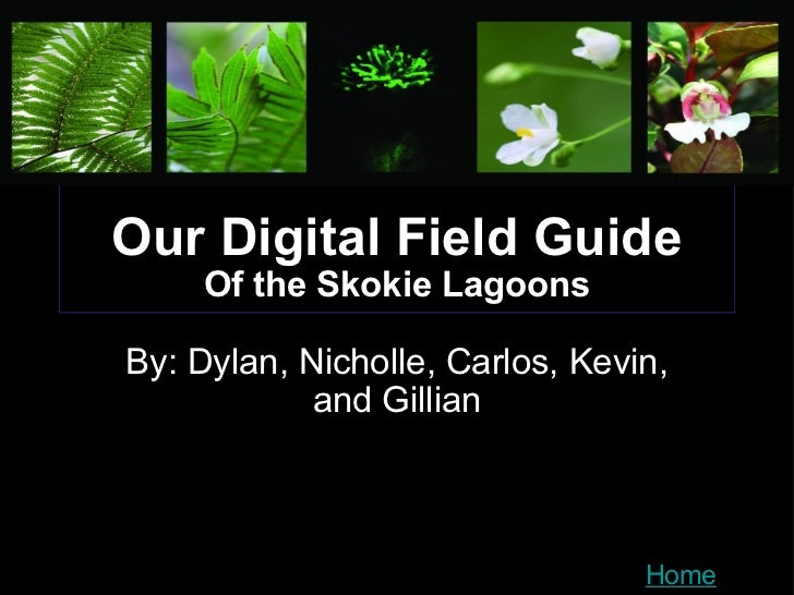 Our Digital Field Guide Of the Skokie Lagoons By: Dylan, Nicholle, Carlos, Kevin, and Gillian Home