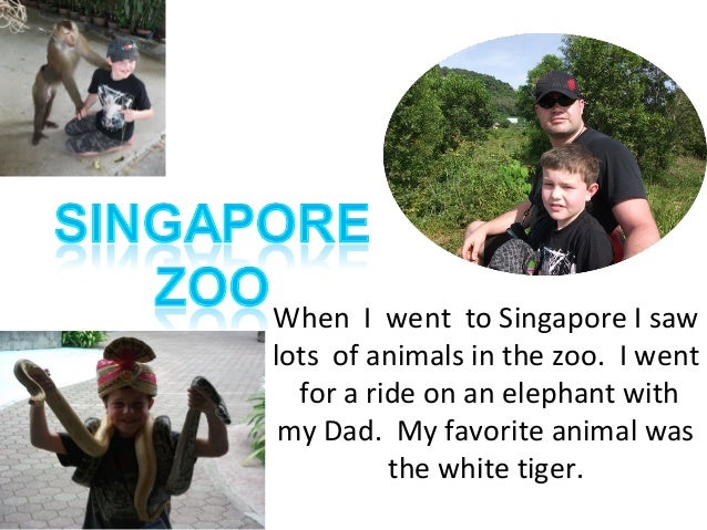When I went to Singapore I saw lots of animals in the zoo. I went for a ride on an elephant with my Dad. My favorite anima...