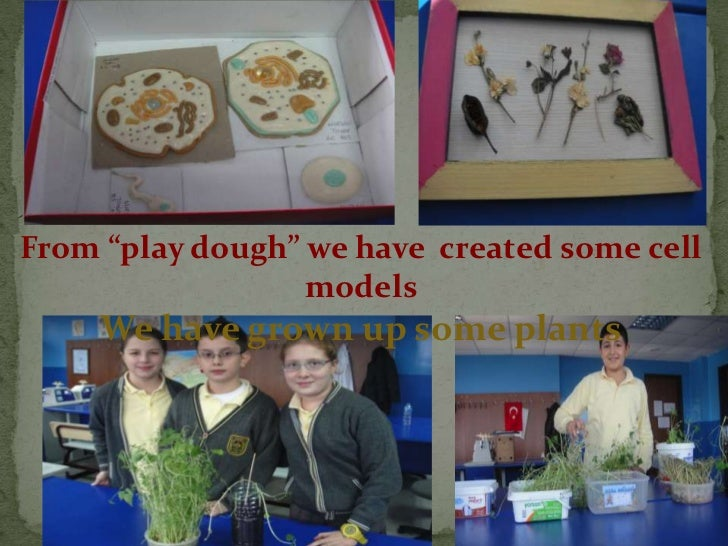 """From """"play dough"""" we have created some cell                  models     We have grown up some plants"""