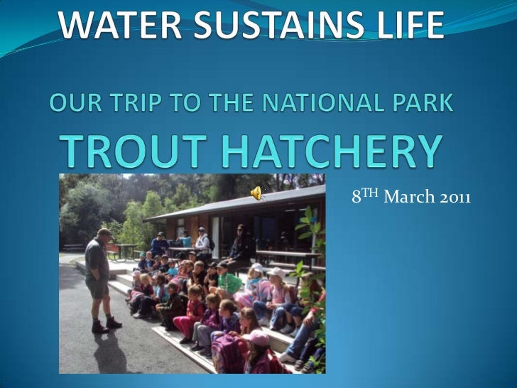 WATER SUSTAINS LIFEOUR TRIP TO THE NATIONAL PARK TROUT HATCHERY<br />8TH March 2011<br />