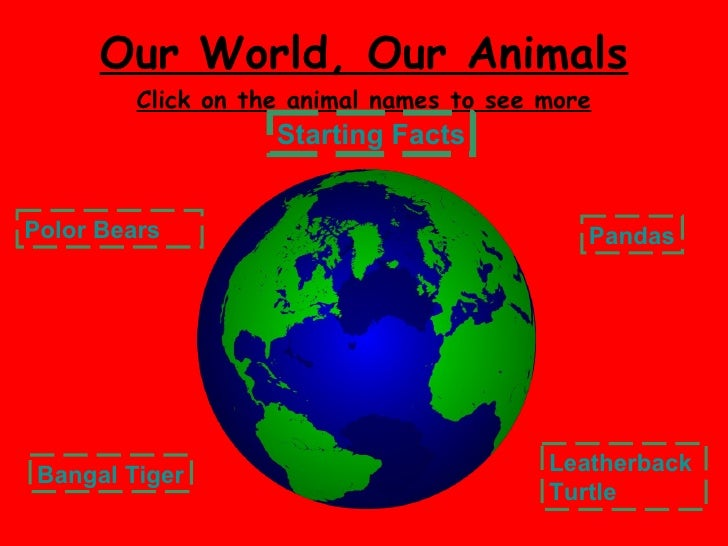 Our World, Our Animals Click on the animal names to see more Polor Bears Bangal Tiger Pandas Leatherback  Turtle Starting ...