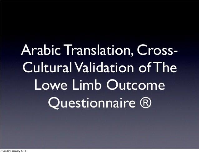 Cross Cultural Adaptation