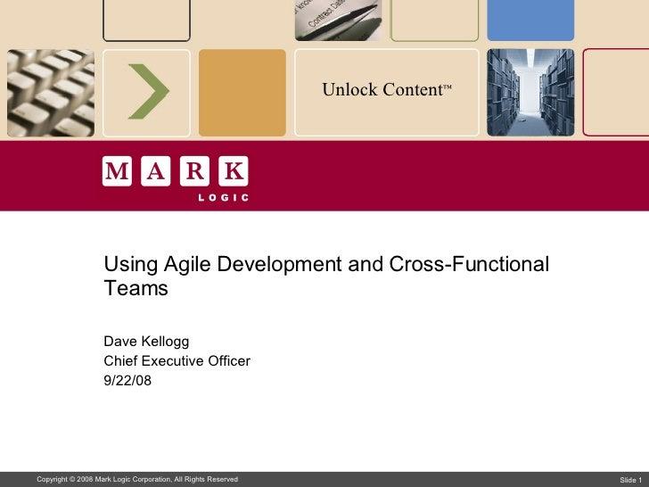 Using Agile Methodologies