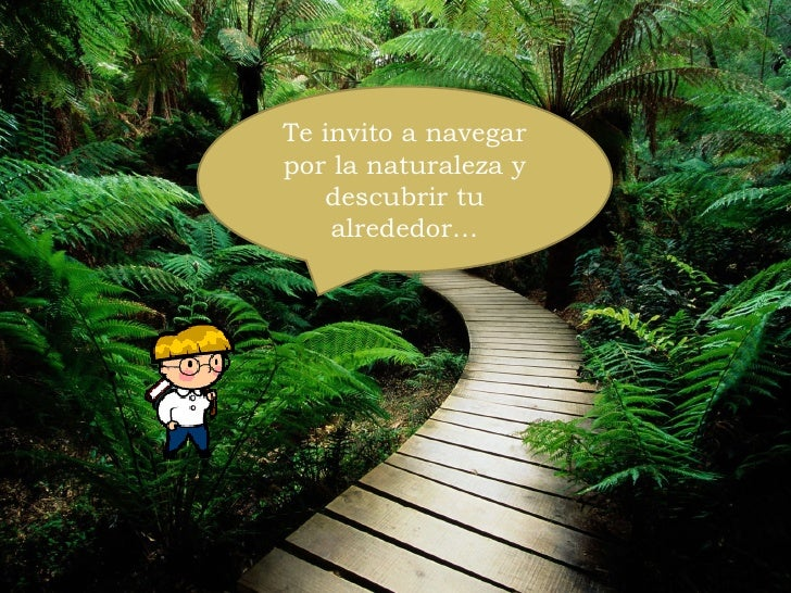 Te invito a navegar por la naturaleza y descubrir tu alrededor…