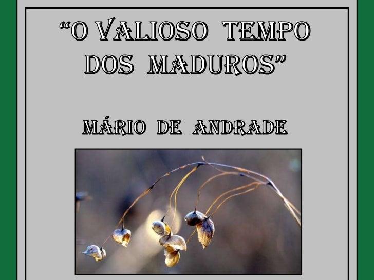 O Valioso Tempo dos Maduros