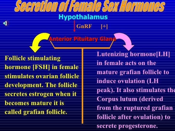 Ovarian hormones