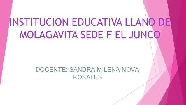INSTITUCION EDUCATIVA LLANO DE MOLAGAVITA SEDE F EL JUNCO DOCENTE: SANDRA MILENA NOVA ROSALES