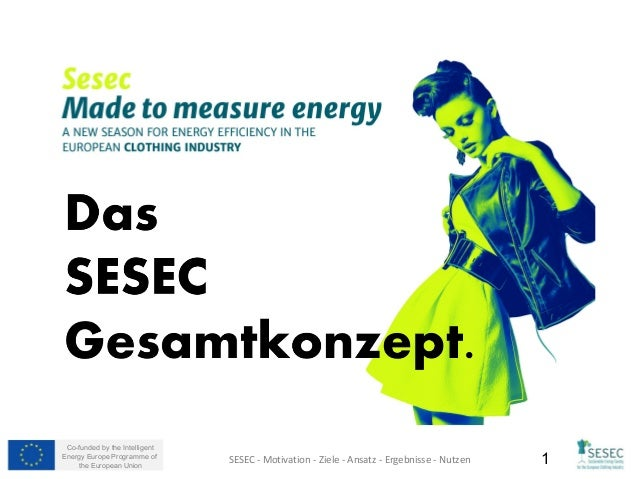 Co-funded by the Intelligent Energy Europe Programme of the European Union 1SESEC - Motivation - Ziele - Ansatz - Ergebnis...