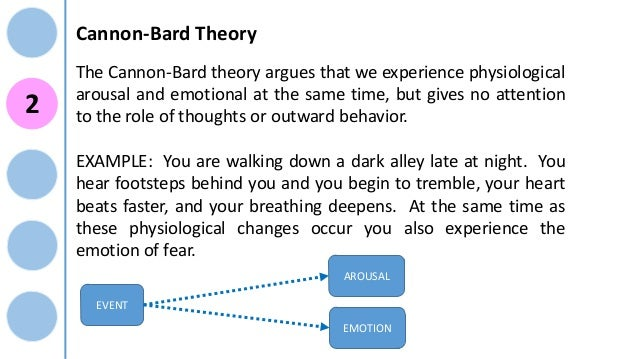 theory ok knowledge emotions role in This module looks at the knowledge emotions, a family of emotional states that foster learning, exploring, and reflecting  theory, research  role of knowledge .