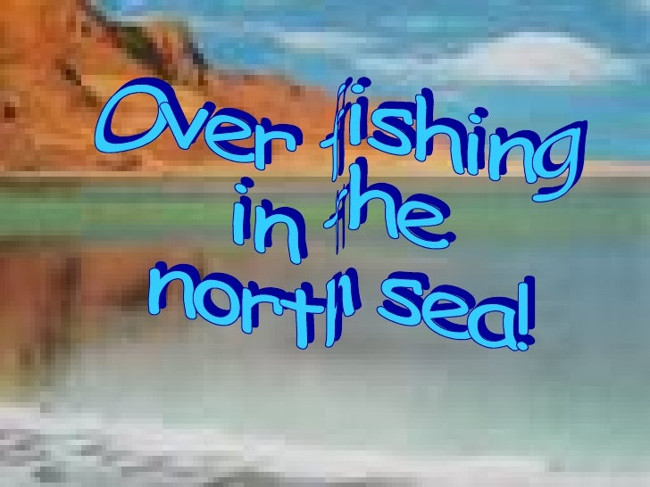 Over fishing  in the  north sea!