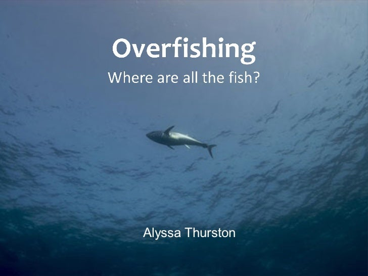 Overfishing Facts OverfishingOverfishing Facts