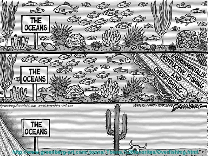 overfishing the problem and the solution The problem with overfishing, and solutions to change sources:   http://www.
