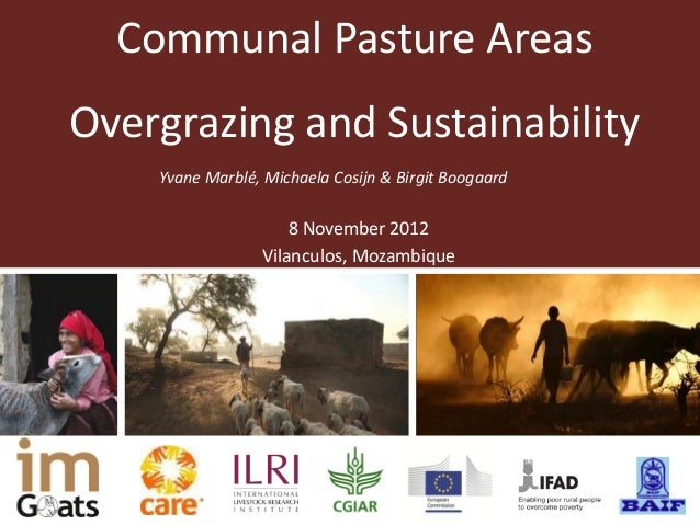 Communal pasture areas: Overgrazing and sustainability