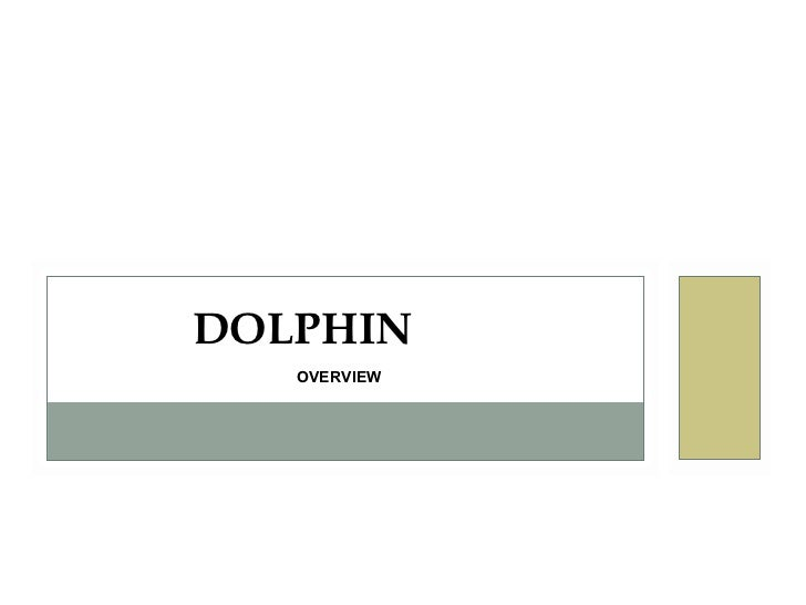 DOLPHIN   OVERVIEW