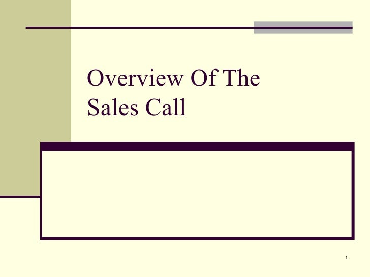Overview Of The  Sales Call