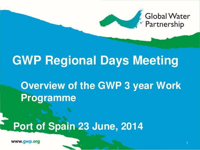 Overview of GWP 3 Year Work Programme