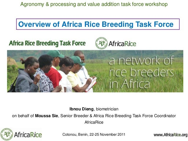 Agronomy & processing and value addition task force workshop   Overview of Africa Rice Breeding Task Force                ...