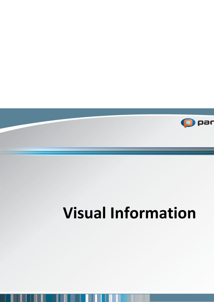 Panopticon - Visual Information