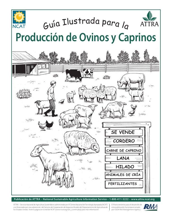 Guía Ilustrada para la Producción de Ovinos y Caprinos