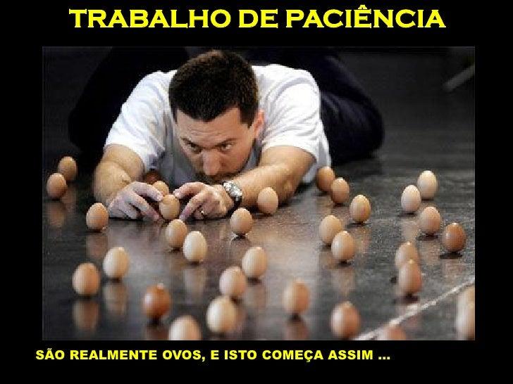 TRABALHO DE PACIÊNCIA     SÃO REALMENTE OVOS, E ISTO COMEÇA ASSIM …