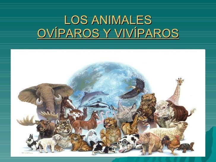 LOS ANIMALES OVÍPAROS Y VIVÍPAROS