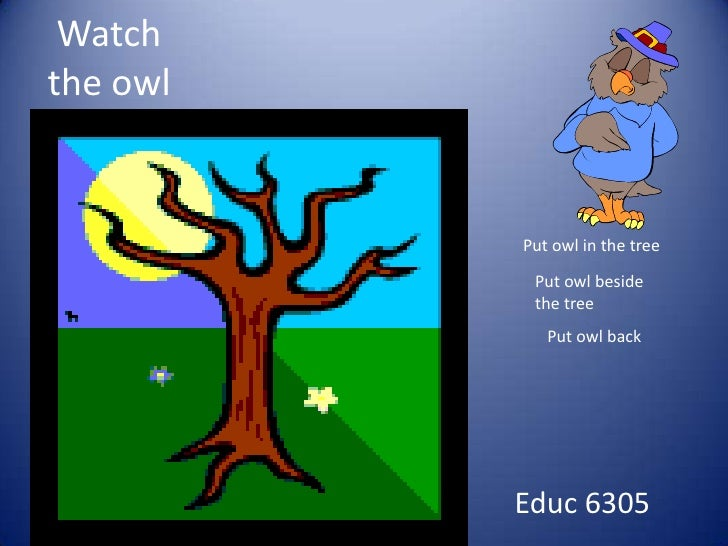 Watch the owl<br />Put owl in the tree<br />Put owl beside the tree <br />Put owl back<br />Educ 6305<br />