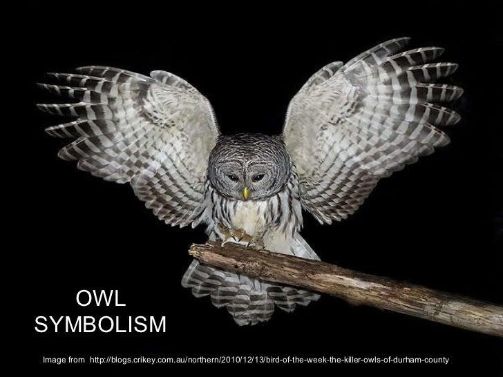 Owl symbolism image from http blogs crikey com au northern 2010 12
