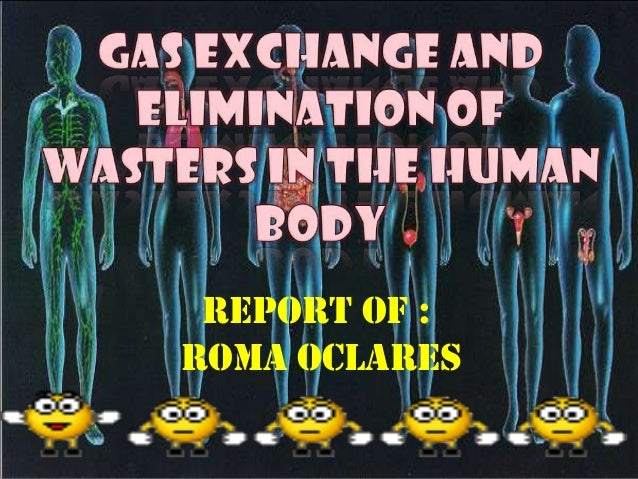 Report of : Roma Oclares