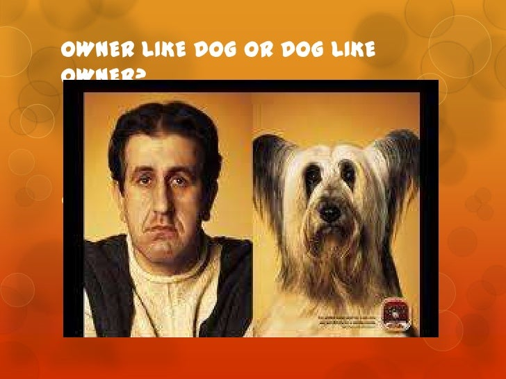 OWNER LIKE DOG OR DOG LIKEOWNER?
