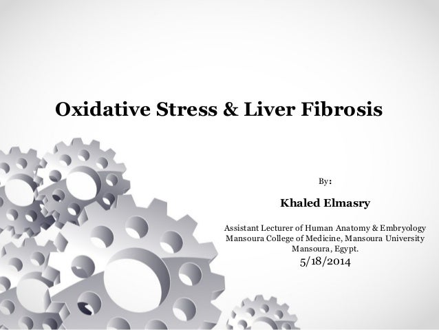 Oxidative Stress & Liver Fibrosis By: Khaled Elmasry Assistant Lecturer of Human Anatomy & Embryology Mansoura College of ...