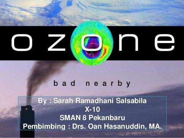 Ozon plh