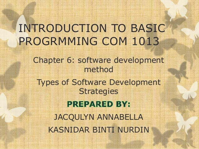INTRODUCTION TO BASIC PROGRMMING COM 1013 Chapter 6: software development method Types of Software Development Strategies ...