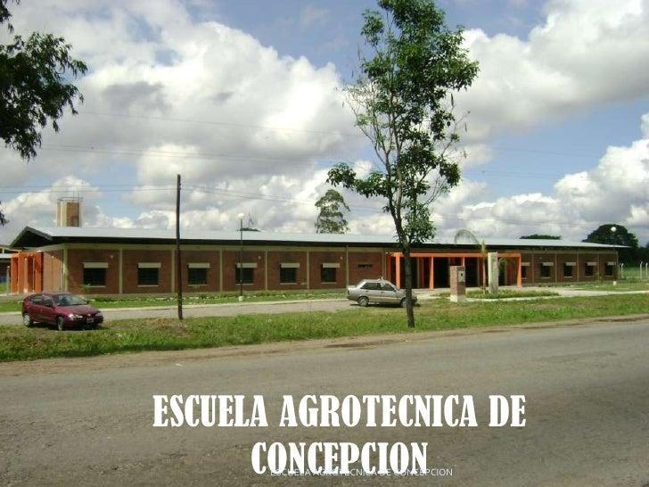 ESCUELA AGROTECNICA DE CONCEPCION<br />ESCUELA AGROTÉCNICA DE CONCEPCION<br />