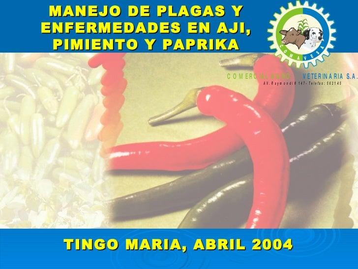 MANEJO DE PLAGAS Y ENFERMEDADES EN AJI, PIMIENTO Y PAPRIKA TINGO MARIA, ABRIL 2004