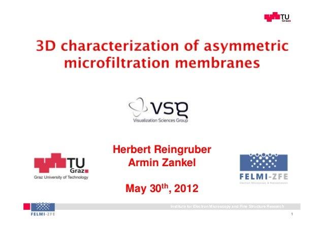 3D characterization of asymmetric microfiltration membranes