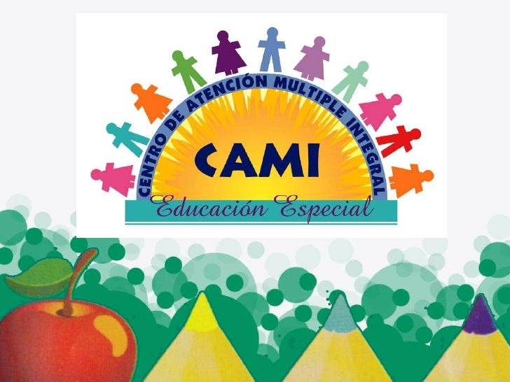P 3b presentacion CAMI