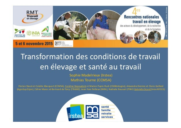 Transformationdesconditionsdetravail enélevageetsantéautravail SophieMadelrieux(Irstea) MathiasTourne(CCMSA)...