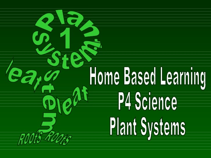 P5 Fdn Plant System(Revision) Hb Lwk2