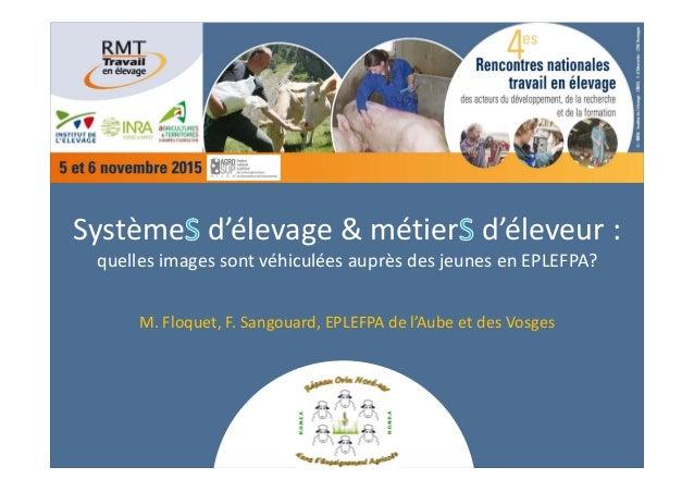 Système d'élevage&métier d'éleveur: quellesimagessontvéhiculéesauprèsdesjeunesenEPLEFPA? M.Floquet,F.Sangou...