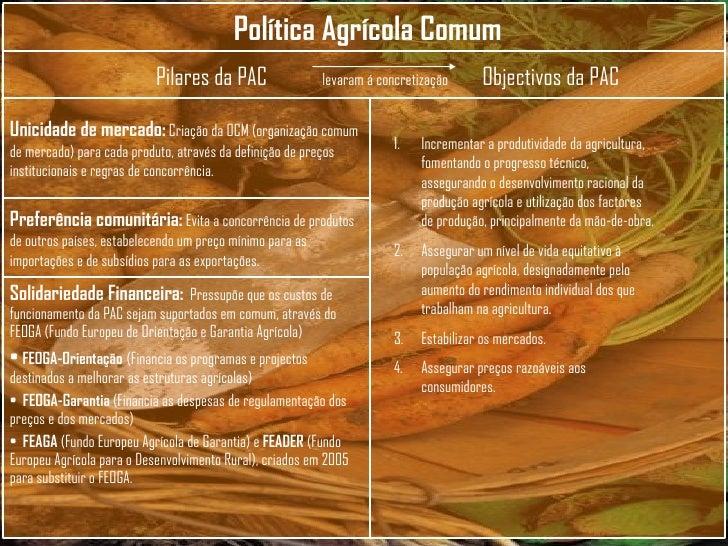 <ul><li>Incrementar a produtividade da agricultura, fomentando o progresso técnico, assegurando o desenvolvimento racional...