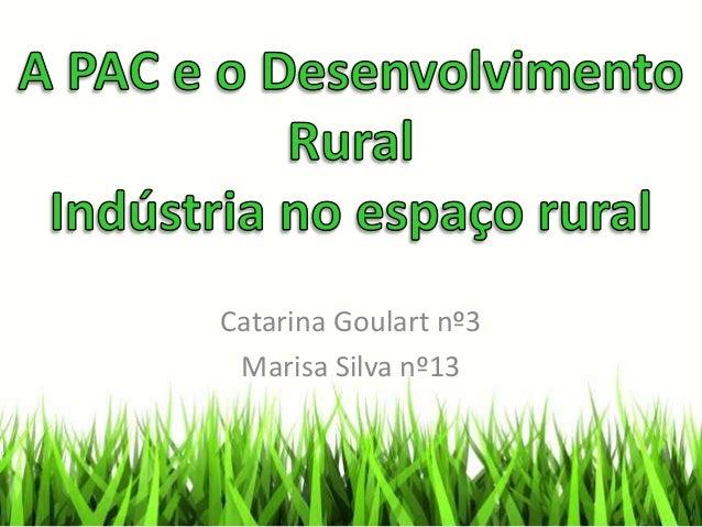 Catarina Goulart nº3 Marisa Silva nº13