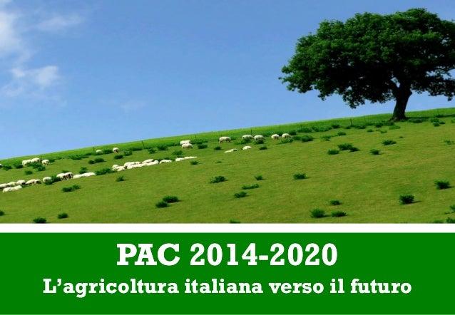 PAC 2014PAC 2014--20202020 L'agricoltura italiana verso il futuroL'agricoltura italiana verso il futuro