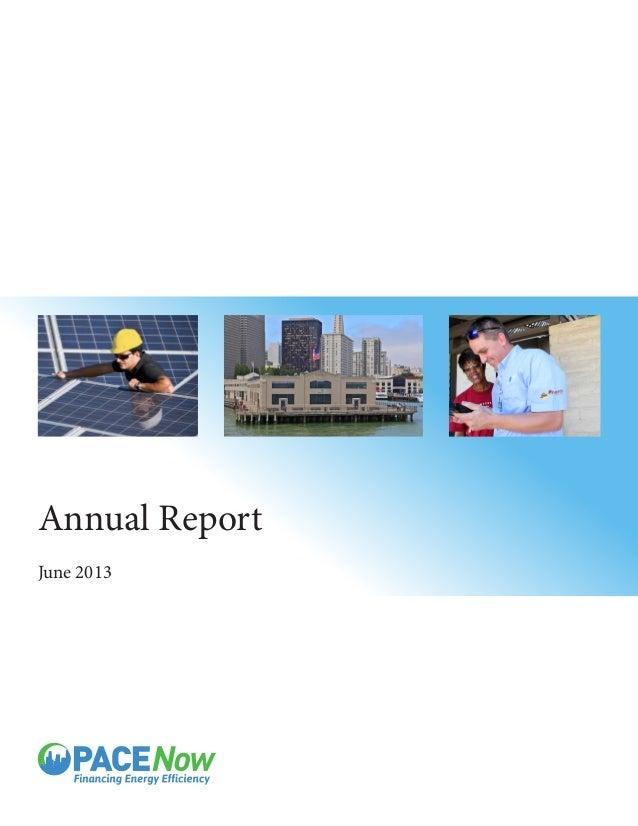 Annual Report June 2013
